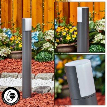 Baulund Oświetlenie ścieżek LED Antracytowy, 1-punktowy