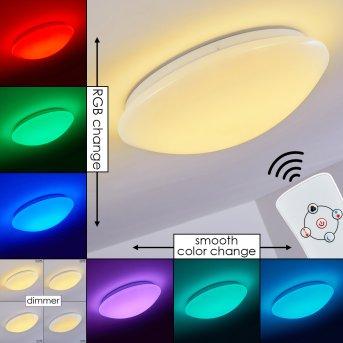 Brighton Lampa Sufitowa LED Biały, 1-punktowy, Zdalne sterowanie, Zmieniacz kolorów