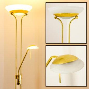 Biot lampa stojąca oświetlająca sufit LED Mosiądz, 2-punktowe