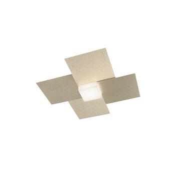 Grossmann Creo Lampa Sufitowa LED W kolorze szampana, 1-punktowy