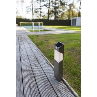 Lutec Solstel Oświetlenie ścieżek LED Stal nierdzewna, 1-punktowy, Czujnik ruchu