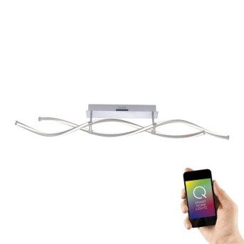 Paul Neuhaus Q-MALINA Lampa Sufitowa LED Stal nierdzewna, 2-punktowe, Zdalne sterowanie