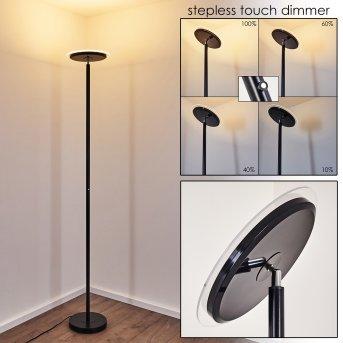 Wonsbek Lampa Stojąca LED Czarny, 1-punktowy