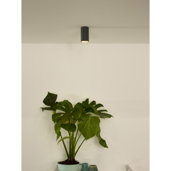 lampy sufitowe listwy Lucide DELTO LED Siwy, 1-punktowy