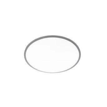 WOFI LINOX Lampa Sufitowa LED Srebrny, 1-punktowy, Zdalne sterowanie, Zmieniacz kolorów