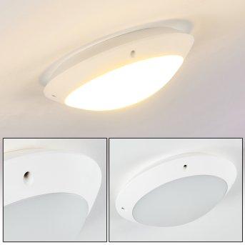 Grafton Lampa Sufitowa zewnętrzna Biały, 1-punktowy