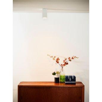 lampy sufitowe listwy Lucide DELTO LED Biały, 1-punktowy