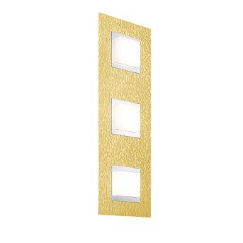 Grossmann BASIC Oświetlenie ścienne i sufitowe LED Mosiądz, 3-punktowe