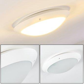 Grafton Lampa Sufitowa zewnętrzna Biały, 2-punktowe