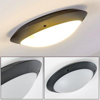 Grafton Lampa Sufitowa zewnętrzna Antracytowy, 2-punktowe