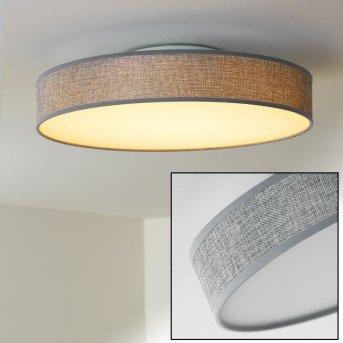 Victoria Lampa sufitowa LED Biały, 1-punktowy