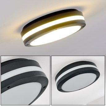 Wollongong Lampa Sufitowa zewnętrzna LED Antracytowy, 1-punktowy