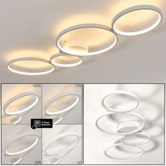 Rodekro Lampa Sufitowa LED Biały, 1-punktowy
