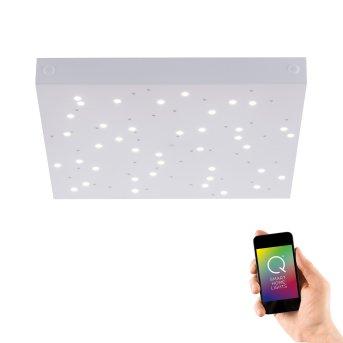 Lampa Sufitowa Paul Neuhaus Q-UNIVERSE LED Biały, 1-punktowy, Zdalne sterowanie, Zmieniacz kolorów