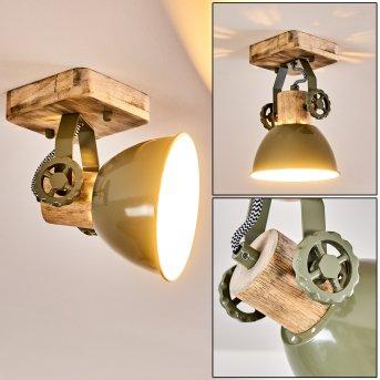 Orny Lampa Sufitowa Zielony, 1-punktowy