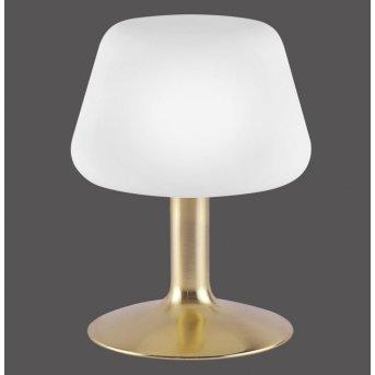 Paul Neuhaus TILL lampa stołowa LED Mosiądz, 1-punktowy