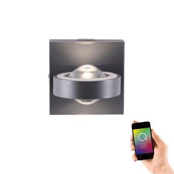 Kinkiet Paul Neuhaus Q-MIA LED Antracytowy, 2-punktowe, Zdalne sterowanie
