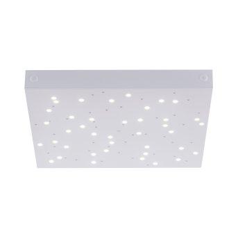 Lampa Sufitowa Paul Neuhaus Q-UNIVERSE LED Biały, 1-punktowy, Zmieniacz kolorów