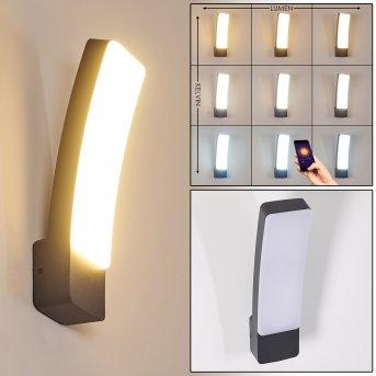 Maseru Zewnętrzny kinkiet LED Antracytowy, 1-punktowy
