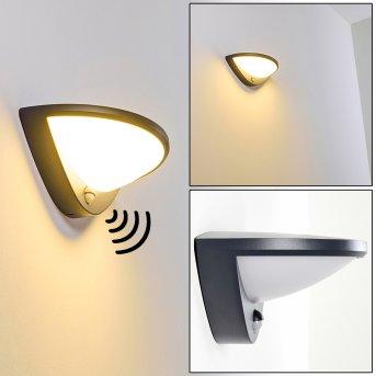 Carano Zewnętrzny kinkiet LED Czarny, 1-punktowy, Czujnik ruchu