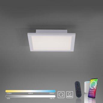 Lampa Sufitowa Paul Neuhaus Q-Flag LED Biały, 1-punktowy, Zdalne sterowanie