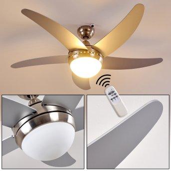 Lampy sufitowe z wentylatorem Morino Nikiel matowy, Srebrny, 2-punktowe, Zdalne sterowanie