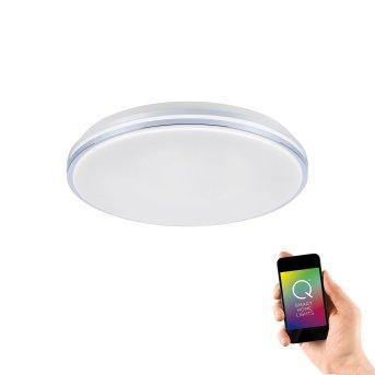Lampa Sufitowa Paul Neuhaus Q-BENNO LED Chrom, 1-punktowy, Zdalne sterowanie
