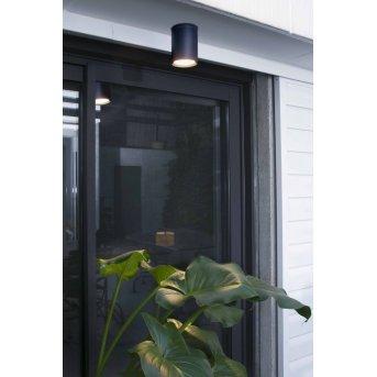 Faro Tasa lampa sufitowa na zewnątrz Antracytowy, 1-punktowy