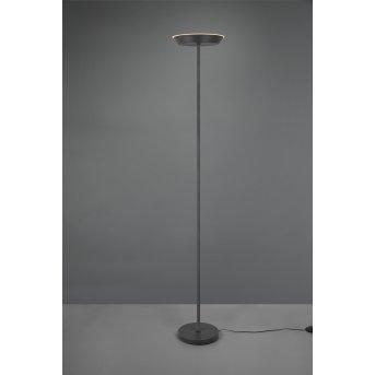 Reality Swona Lampa Stojąca LED Czarny, 1-punktowy