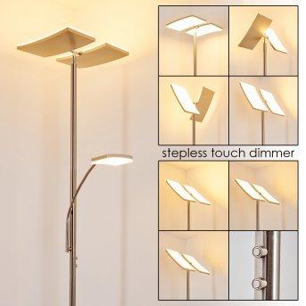 Thyolo Lampa Stojąca oświetlająca sufit LED Stal szczotkowana, 2-punktowe