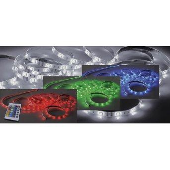 Paul Neuhaus TEANIA Paski świetlne LED Kolorowy, 1-punktowy, Zdalne sterowanie, Zmieniacz kolorów