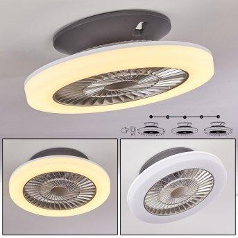 Somalia wentylator sufitowy LED Srebrny, Przezroczysty, 1-punktowy