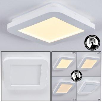 Siguna Lampa Sufitowa LED Biały, 1-punktowy