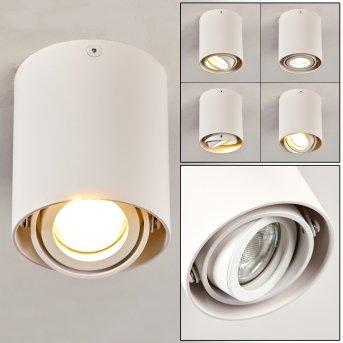 Lampa Sufitowa Anguilla Biały, 1-punktowy