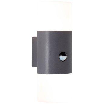 AEG Farlay Zewnętrzny kinkiet LED Antracytowy, 2-punktowe, Czujnik ruchu