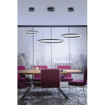 Paul Neuhaus TITUS Lampa Wisząca LED Antracytowy, 1-punktowy