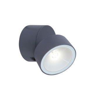 Lutec TRUMPET Zewnętrzny kinkiet LED Antracytowy, 1-punktowy