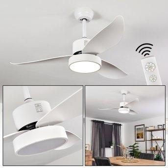 Doha wentylator sufitowy LED Biały, 1-punktowy, Zdalne sterowanie