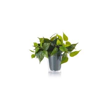 Trio Plant Kwiaty LED Zielony