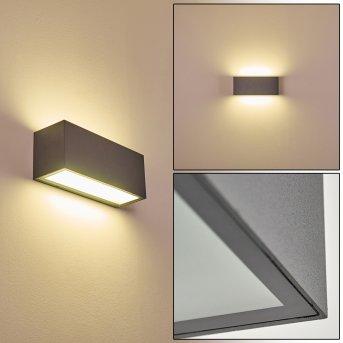 Zewnętrzny kinkiet Spidern LED Antracytowy, 1-punktowy
