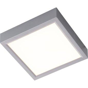 Nino-Leuchten PUCCY Lampa Sufitowa LED Srebrny, 1-punktowy