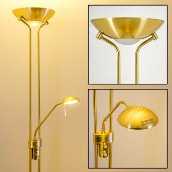 Rom lampa stojąca oświetlająca sufit LED Mosiądz, 2-punktowe