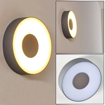 Felsted Zewnętrzny kinkiet LED Srebrny, 1-punktowy