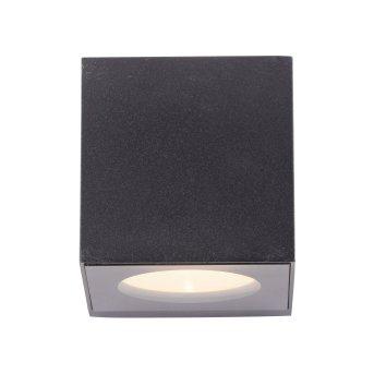 Paul Neuhaus ORANGE Lampa ścienna LED Antracytowy, 2-punktowe