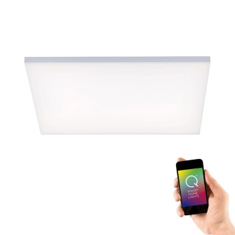 Paul Neuhaus Q-FLAG Lampa Sufitowa LED Biały, 1-punktowy, Zdalne sterowanie, Zmieniacz kolorów