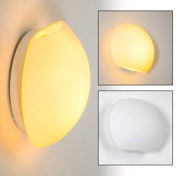 Lampa ścienna Concha Biały, 1-punktowy