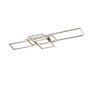 Trio Irvine Lampa Sufitowa LED Nikiel matowy, 1-punktowy, Zdalne sterowanie