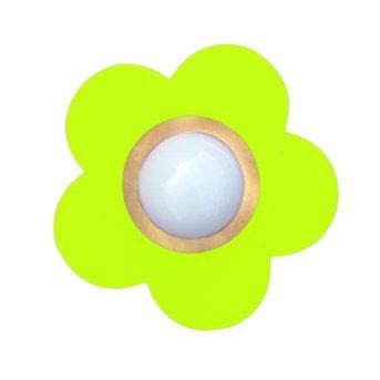 Waldi Fleur petit lampa sufitowa Zielony, 1-punktowy