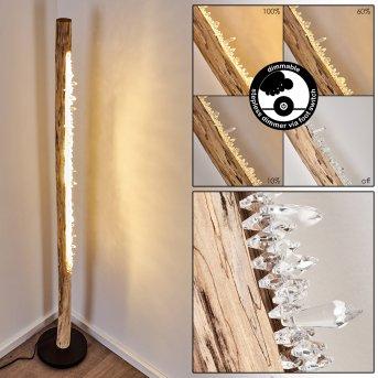 Bansberia Lampa Stojąca LED Czarny, Jasne drewno, 1-punktowy